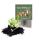 10x 'Waldtiere' Samenbomben als Mitgebsel zum Kindergeburtstag / Geschenk / Seedbombs / Blumen / Partytüten / Mitgebseltüten / Geschenktüten / Give-aways / Geburtstag / Kinder / Saatkugeln