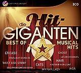Die Hit Giganten Best of Musical Hits