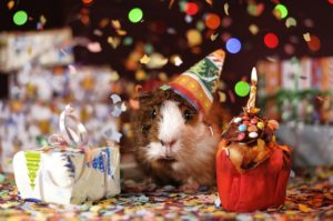 Gutscheinvorlage Geburtstag