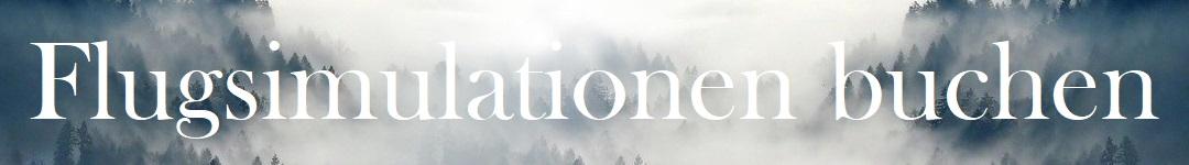 Flugsimulationen Banner
