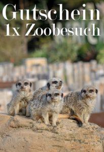 Gutscheinvorlage Zoobesuch