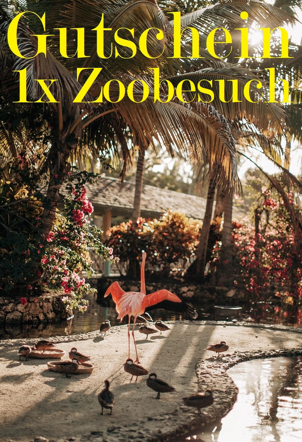 Gutscheinvorlage für den Zoo