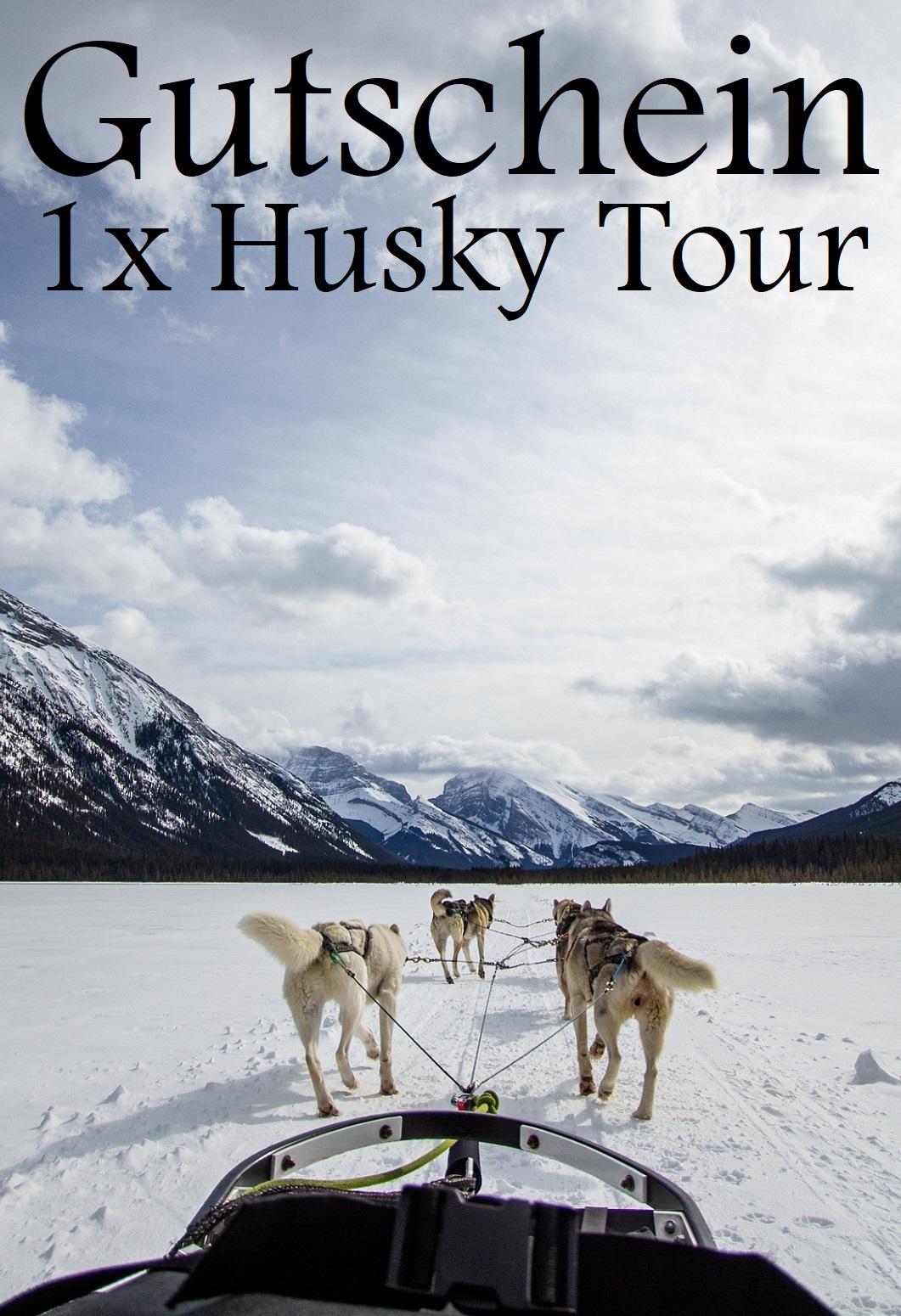 Gutscheinvorlage für Huskytouren