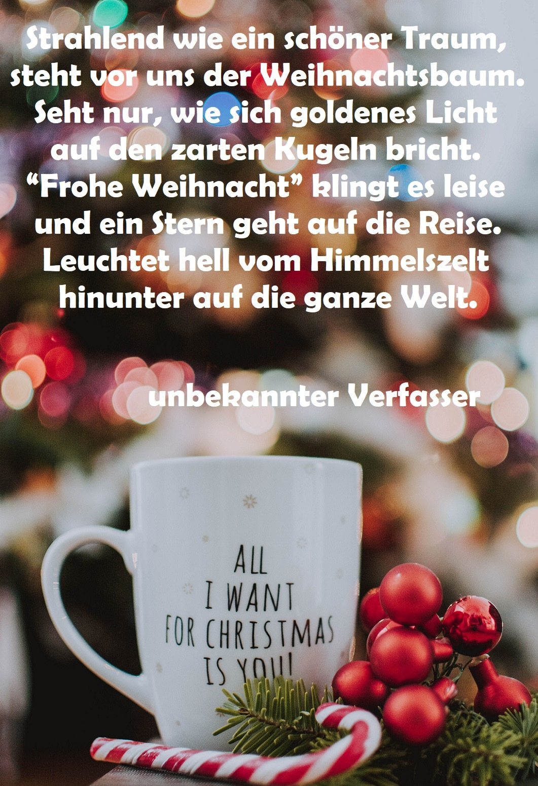 Weihnachtswünsche Bild 3